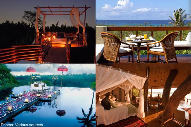 Tree House Jakarta 10 Best Tree House Hotels in